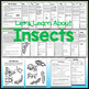 Insects Worksheets and Activities with Test and Answer Keys