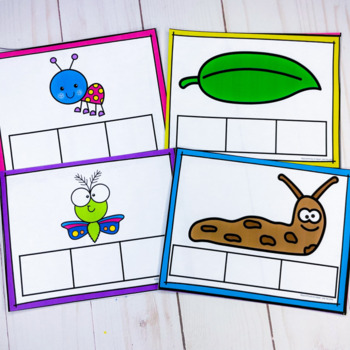Insect- Write The Room and Word Boxes