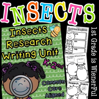 Insects Insects Unit
