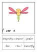 Insects adapted book