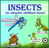 Insects - an interactive SmartBoard and Whiteboard lesson.