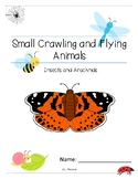 Insects and Arachnids Lower Elementary Small Crawling and