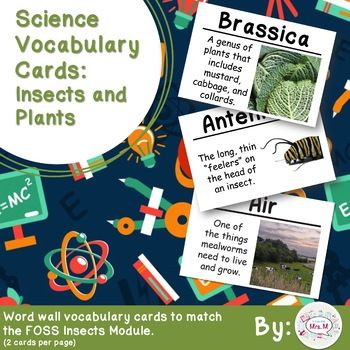 Insects and Plants Science Vocabulary Cards (FOSS) Large