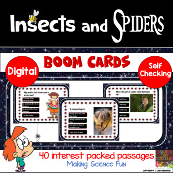 Insects and Spiders Boom Cards