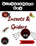 Insects and Spiders Dichotomous Key