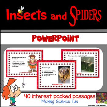 Insects and Spiders PowerPoint
