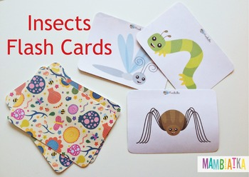 Insects / bugs flash cards