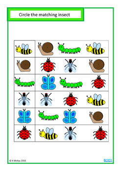Insects Match Count Sequence Basic Concepts BUNDLE Autism Special Education