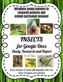 Insects for Google Docs - Study, Research, & Report for Di