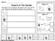 Insects in the Garden: Graphing Worksheets