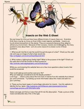 Insects on the Web E-sheet