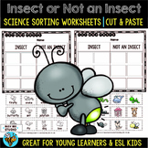 Insects vs Not Insects Sorts | Cut and Paste Worksheets