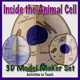 Inside the Animal Cell - 3D Model Foldable Project for Students