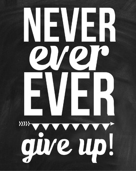 Inspirational Classroom Poster {Never Ever Ever Give Up}