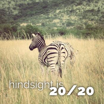 Inspirational Poster, Zebra