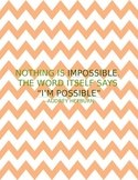 Inspirational Quote Posters for Classroom
