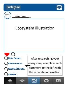 Instagram Ecosystem