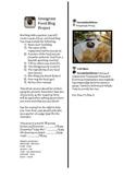 Instagram Food Blog Project