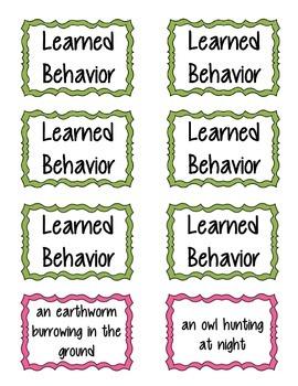 Instincts vs. Learned Behavior Memory Game