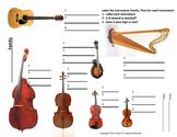 Instrument Families: Strings