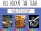 Instrument Spotlight Tuba