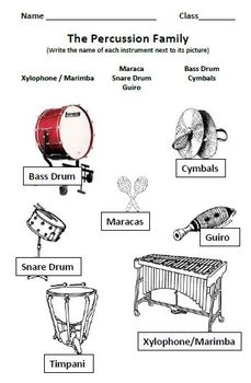 Instrumental Classmates: Percussion Worksheet