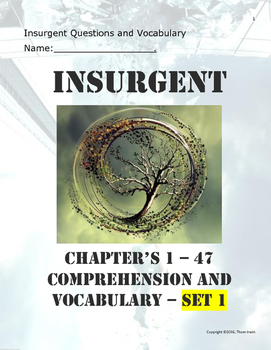 Insurgent - Questions and Vocabulary
