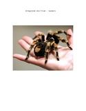 Integrated Spider Unit Plan