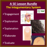 Integumentary System - 5E Lesson Bundle