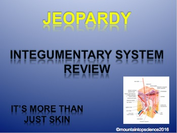 Integumentary System Bundle
