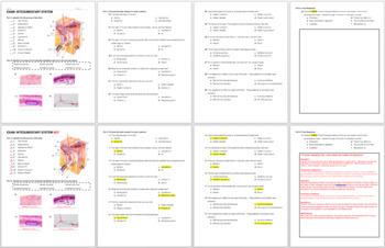 Integumentary System Exam