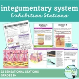 Integumentary System Exhibition Stations
