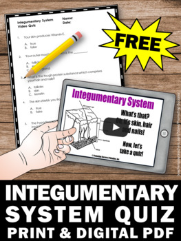 free integumentary system activity human body systems grade 5 tpt