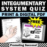 FREE  Integumentary System 5th Grade Human Body Systems Activity Digital Print