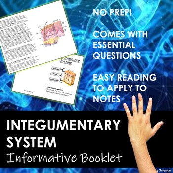 Integumentary System Information Booklet