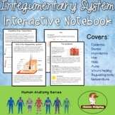 Integumentary System Interactive Notebook