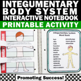 Integumentary System (Skin) Human Body Systems Interactive Notebook Activity