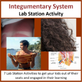 Integumentary System - Lab Station Activity