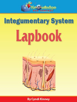 Integumentary System Lapbook
