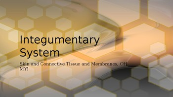 Integumentary System Power Point