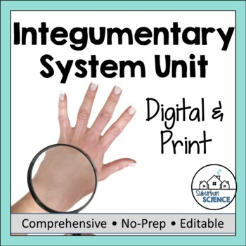 Integumentary System- PowerPoint, Notes, Diagram, & Activity