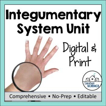 Integumentary System Unit- PowerPoint, Doodle Notes, Diagram, Activity, & Quiz