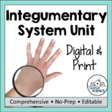 Integumentary System Unit- PowerPoint, Doodle Notes, Diagram, Activity, & Quiz