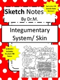Integumentary System/Skin Sketch Doodle Notes, Student Notes, incl FIB Version!