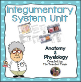 Integumentary System Unit | Anatomy and Physiology | Biology