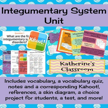 Integumentary System (Skin) Unit! Includes Vocab, Notes, Project, Test, & More!
