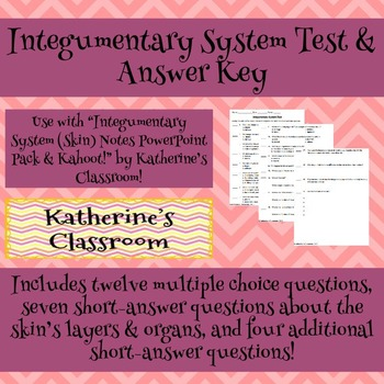 Integumentary System (Skin) Unit Test & Answer Key