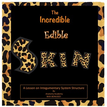 Integumentary System Structure Lesson Plan