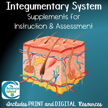Integumentary System Assessment Teaching Resources | Teachers Pay ...