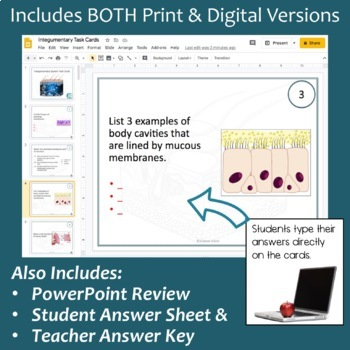 Integumentary System Task Cards with PowerPoint Review
